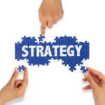 Niche Site Strategy